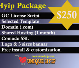 Standard Hyip Package